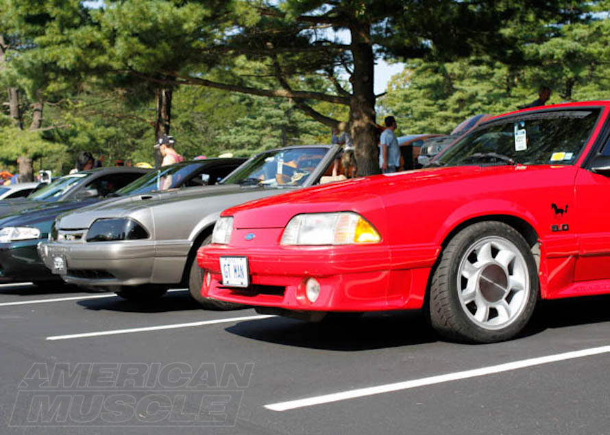 Two Foxbody Mustangs at a Show