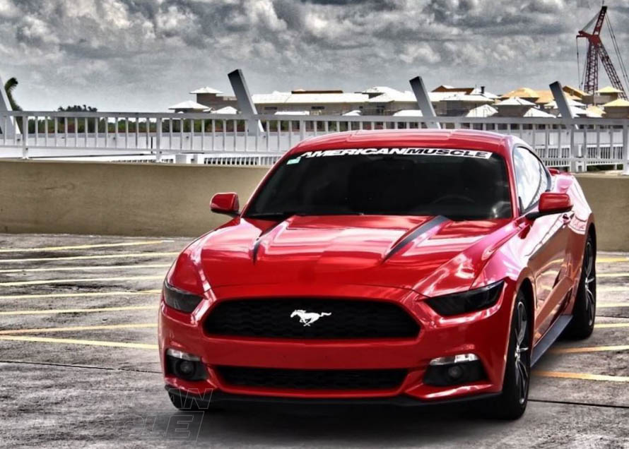Exterior Decal Options For Your S Mustang AmericanMuscle - Badass decals for trucks