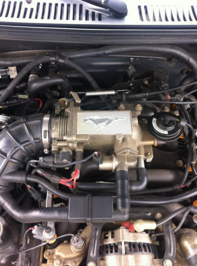 Stock GT Intake Plenum