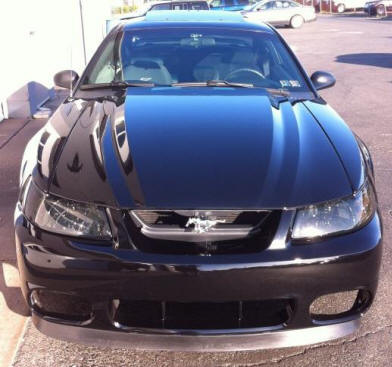 Ford Mustang Detailed for a Car Show