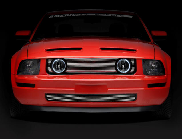 Mustang GT Style Billet Grille