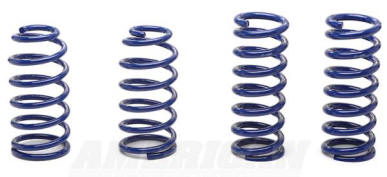Ford Mustang Lowering Springs