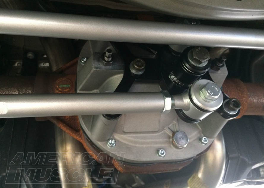 Mustang Watts Links Close Up