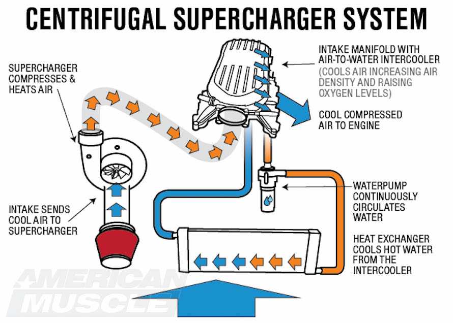 Ford Mustang Supercharger Tech Guide Americanmuscle. Centrifugal Supercharger Operation Diagram. Wiring. Intercooler Engine With Turbocharger Diagram At Scoala.co