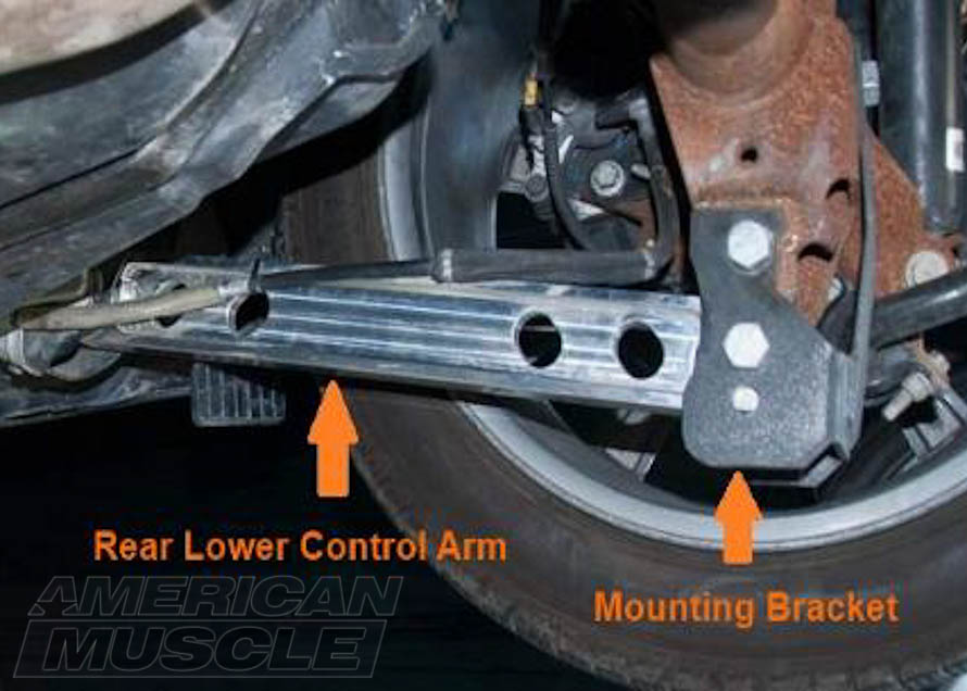 Msutang Lower Rear Control Arms Labeled